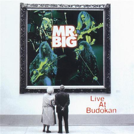 01.Mr. Tambourine Man - Live at Budokan - Zortam Music