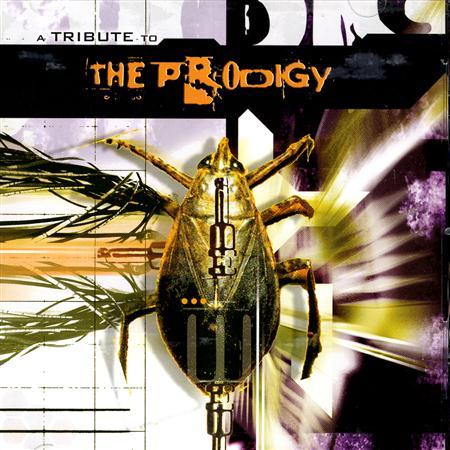 Funker Vogt - VA - A Tribute To The Prodigy - Zortam Music