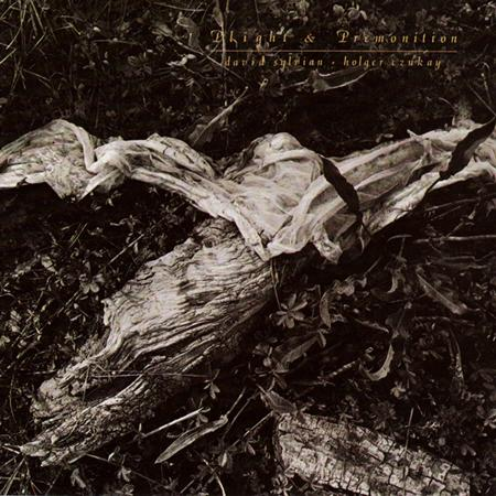 David Sylvian - Plight & Premonition - Lyrics2You