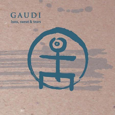 Gaudi - Bass, Sweat & Tears - Zortam Music