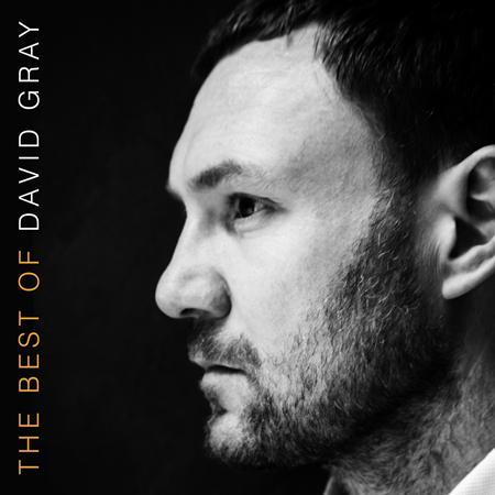 David Grey - The Best Of David Gray - Zortam Music