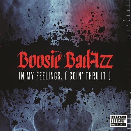 BOOSIE BADAZZ - In My Feelings. - Zortam Music