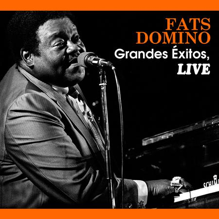 Fats Domino - Fats Domino - Hit Collection Live - Zortam Music