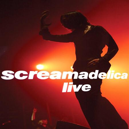 Primal Scream - Screamadelica Live [disc 1] - Zortam Music