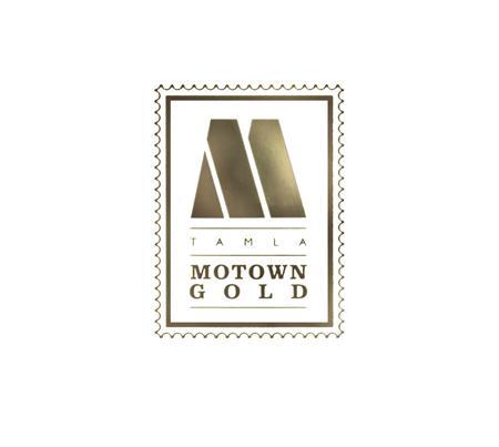Stevie Wonder - Motown Hits Of Gold - Zortam Music