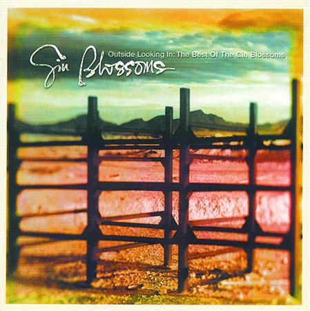 Gin Blossoms - Gin Blossoms - Live In Concert - Zortam Music