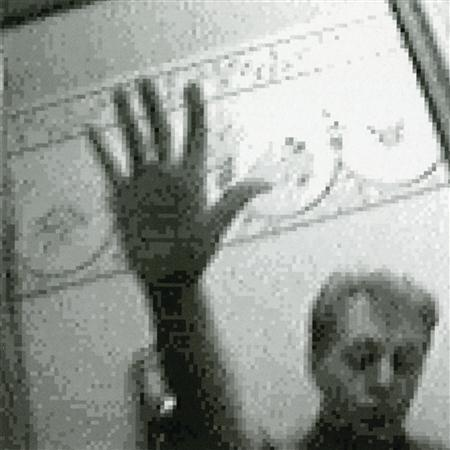 Paul McCartney - Driving Rain [Pre-Release] - Zortam Music