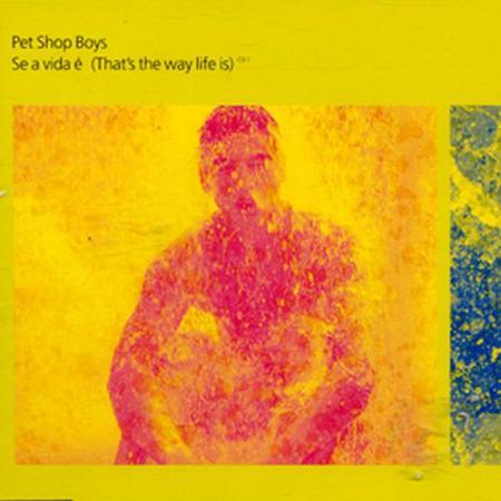 Pet Shop Boys - Se A Vida I (That