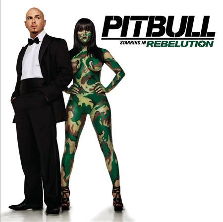 01 - Pitbull - Triumph Lyrics - Zortam Music