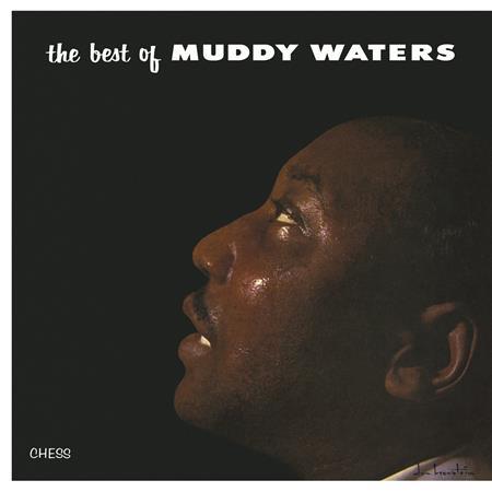 Muddy Waters - Fathers & Sons [chess] - Zortam Music