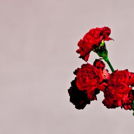John Legend - Love In The Future (Special Edition) - Zortam Music