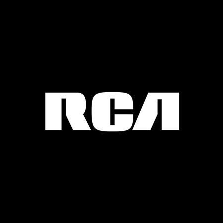 Alicia Keys - Raise A Man - Zortam Music