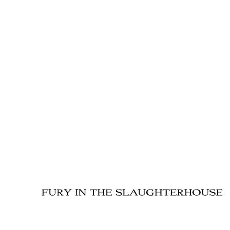 Fury in the Slaughterhouse - Fury and the Slaughterhouse - Peters Best - Zortam Music