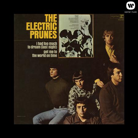 The Electric Prunes - ELECTRIC PRUNES - Lyrics2You