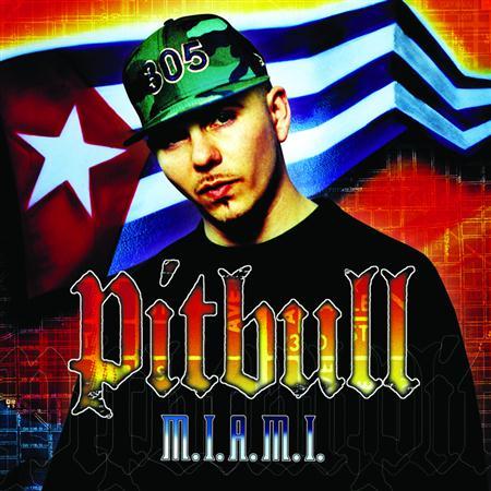 01 - Pitbull, Lil Jon - 305 Anthem Lyrics - Zortam Music