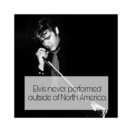 Elvis Presley - Rock & Roll Legend - Zortam Music