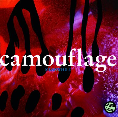 Camouflage - Meanwhile (RM) - Zortam Music