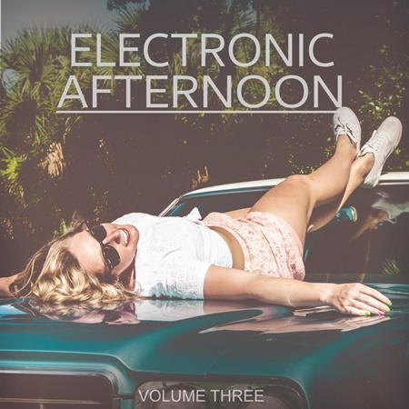 Various Artists - Electronic Afternoon, Vol. 3 - Zortam Music