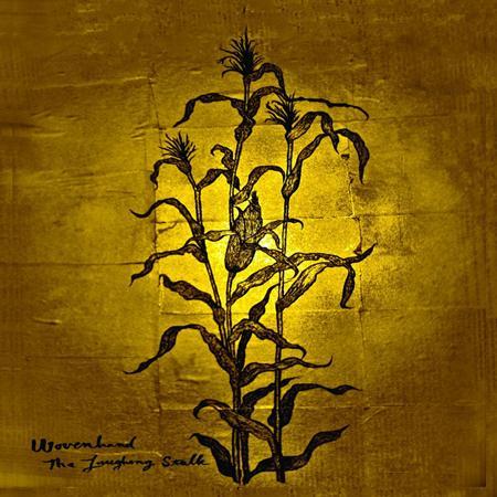 Wovenhand - Glistening Black Lyrics - Zortam Music