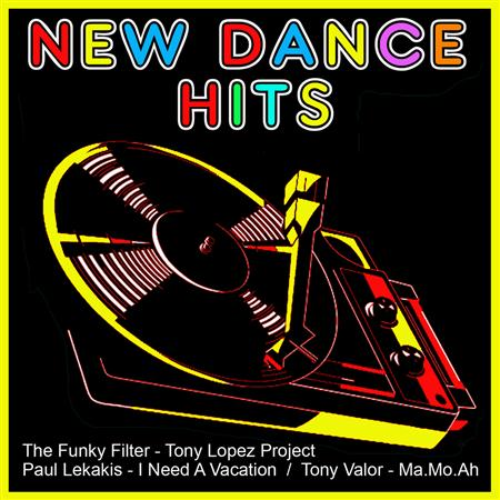 Various Artists - New Dance Hits - Zortam Music