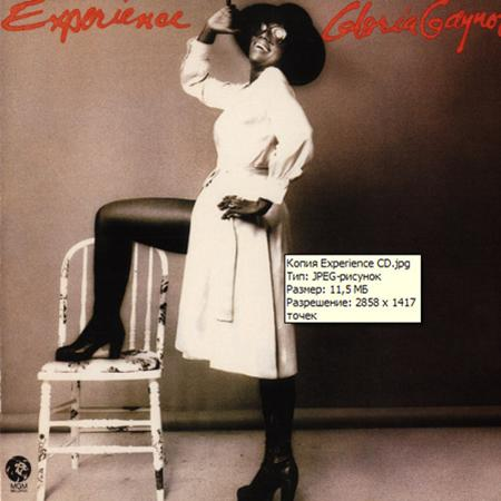 Gloria Gaynor - Experience [expanded Edition] - Zortam Music