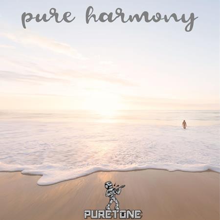 America - pure harmony cd2 - Zortam Music