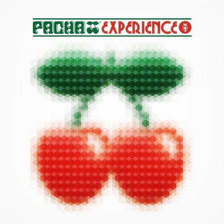 Various Artists - Pacha Experience - Zortam Music