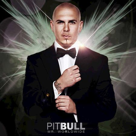 01 - Pitbull - Pitbull Lyrics - Zortam Music