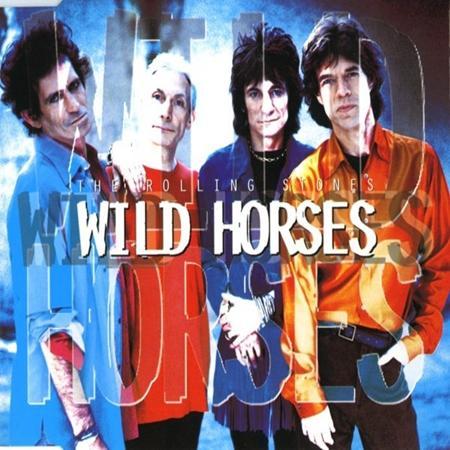 Rolling Stones - Wild Horses Cd Maxi - Lyrics2You