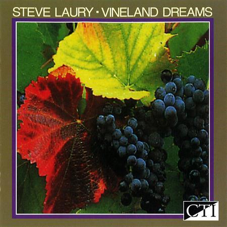 Steve Laury - Vineland Dreams - Zortam Music