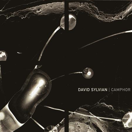 David Sylvian - Camphor - CD2 - Lyrics2You