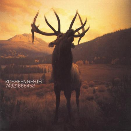 Kosheen - Catch Pt.2 - Zortam Music