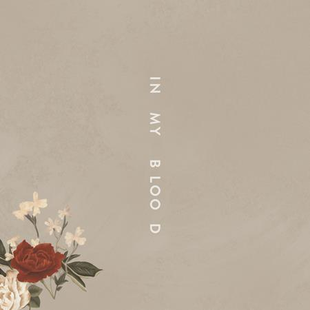 Shawn Mendes - In My Blood (Acoustic) - Zortam Music