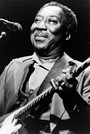 Muddy Waters - Willie Dixon