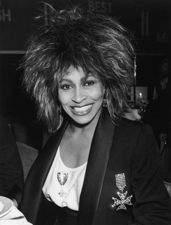Tina Turner - The Ultimate Movies And Musicals Experience - Zortam Music